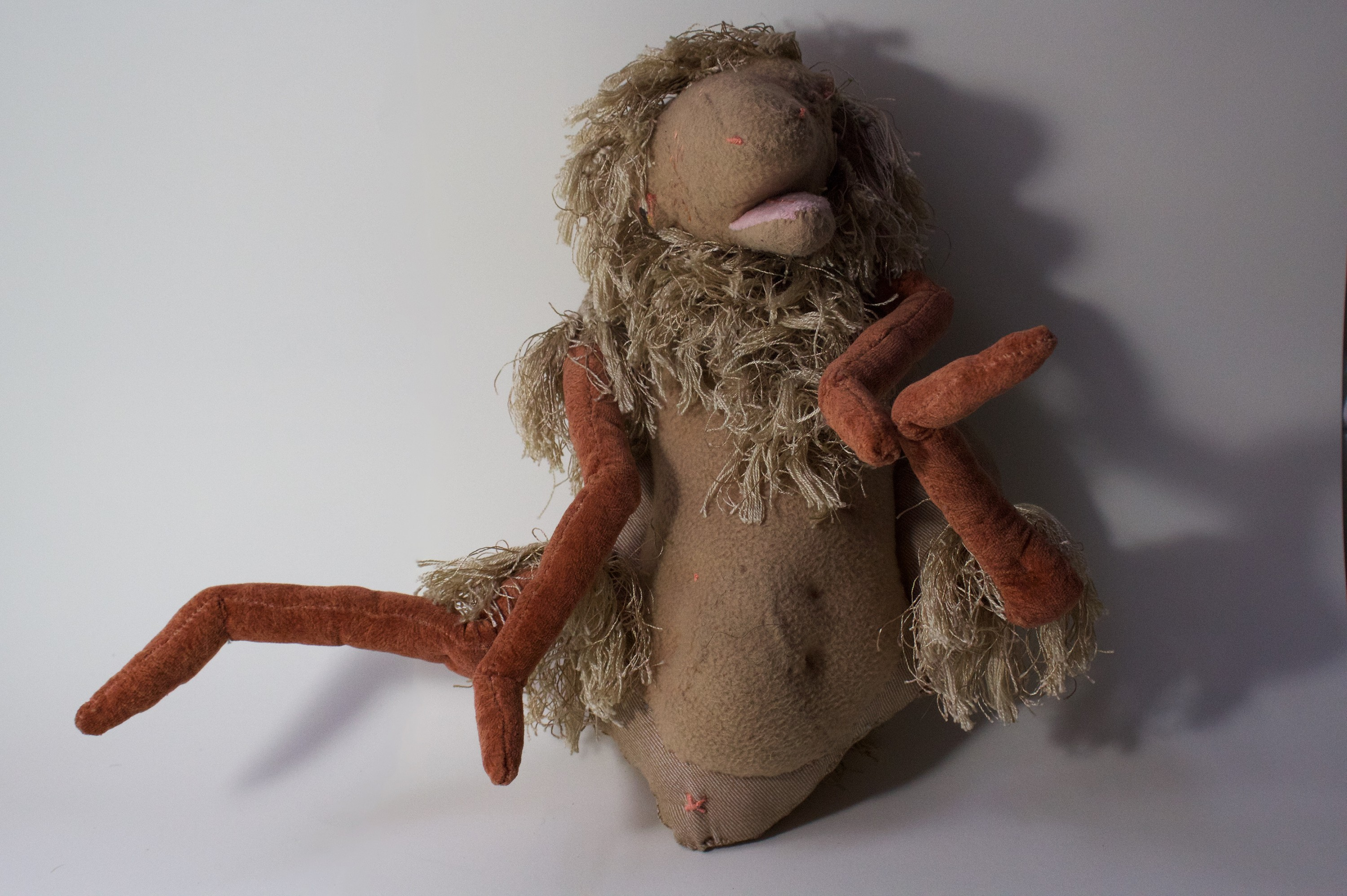 A smaller sized hand puppet. He looks a little like... a poorly groomed dog from another planet? He's beige, he likes to blend in, and often uses his mess of hair as a curtain to shield himself from scary stimuli.