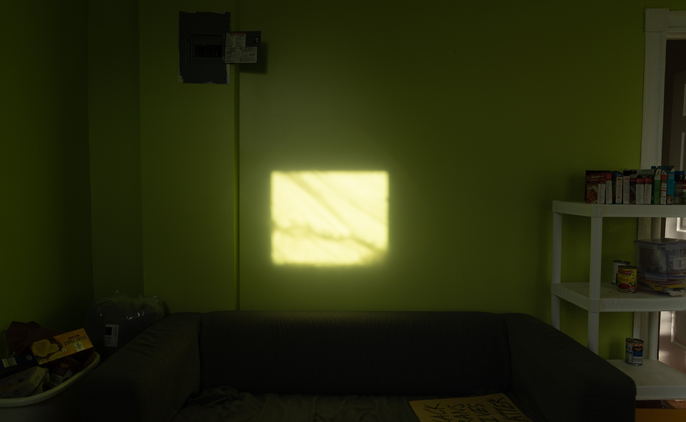 a photo of a green living room with light coming through a window at the center.
