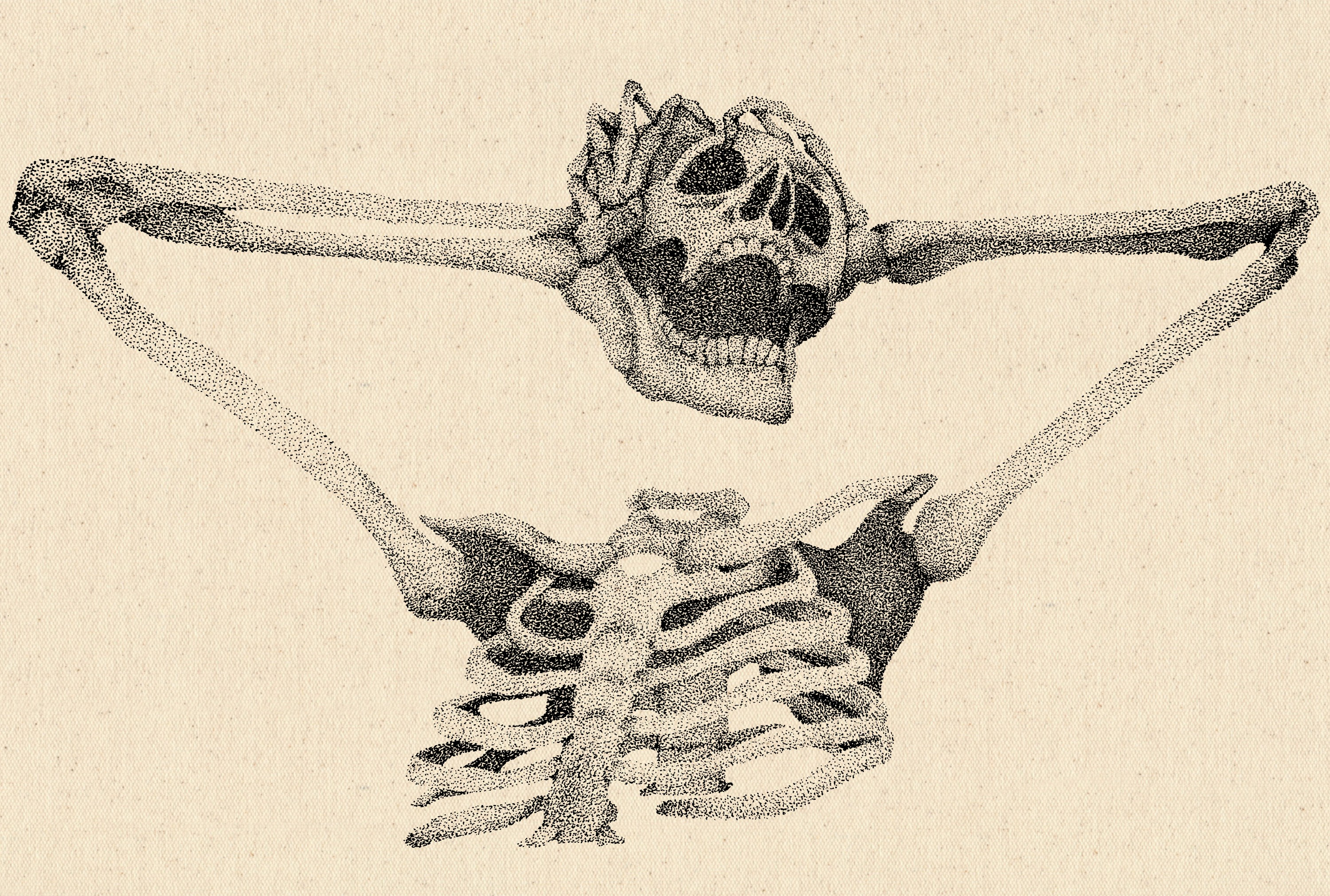 Stippled illustration of a skeleton with its head removed