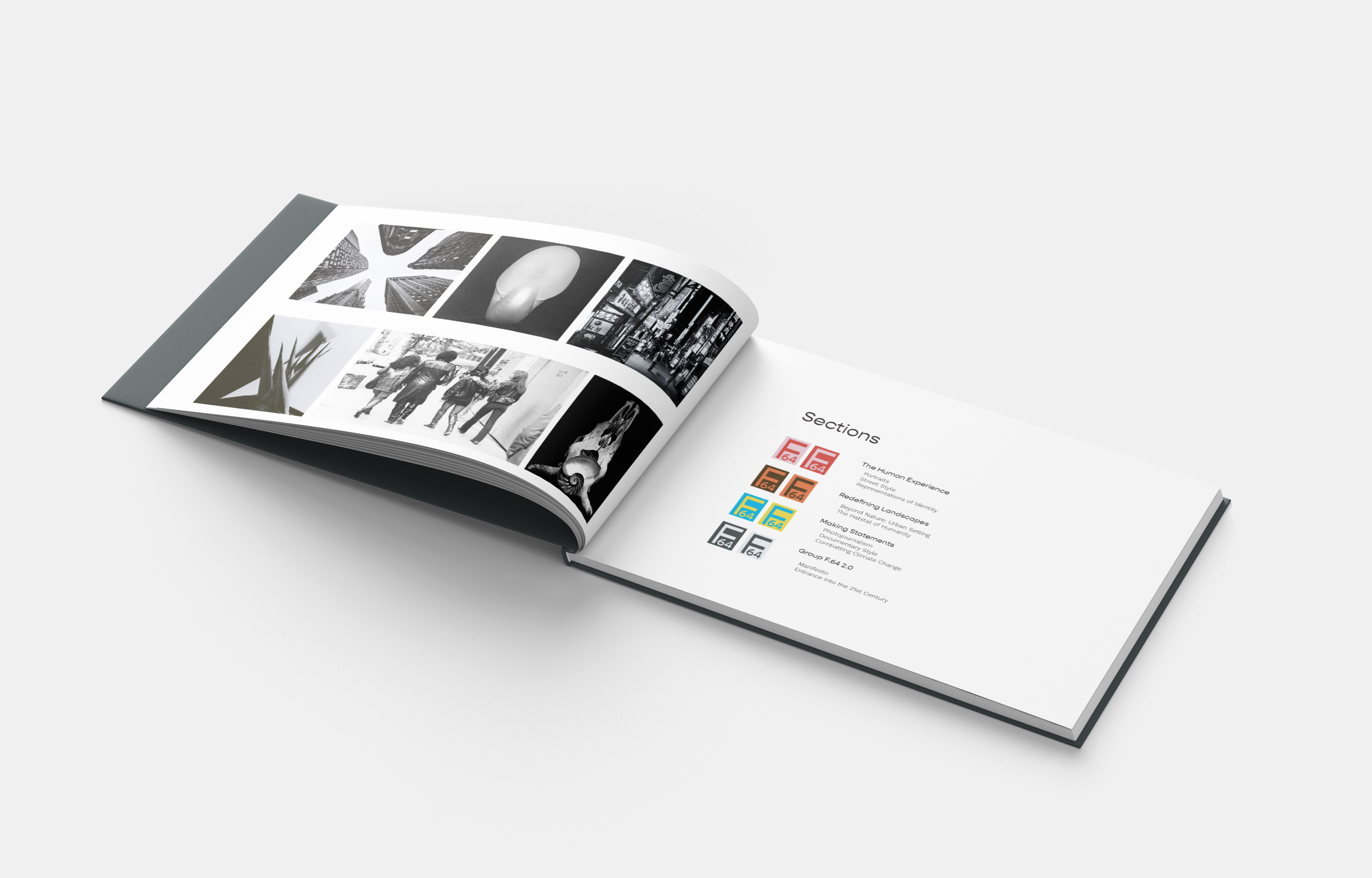 Supplemental book overviewing group and photography shift, outlining sections