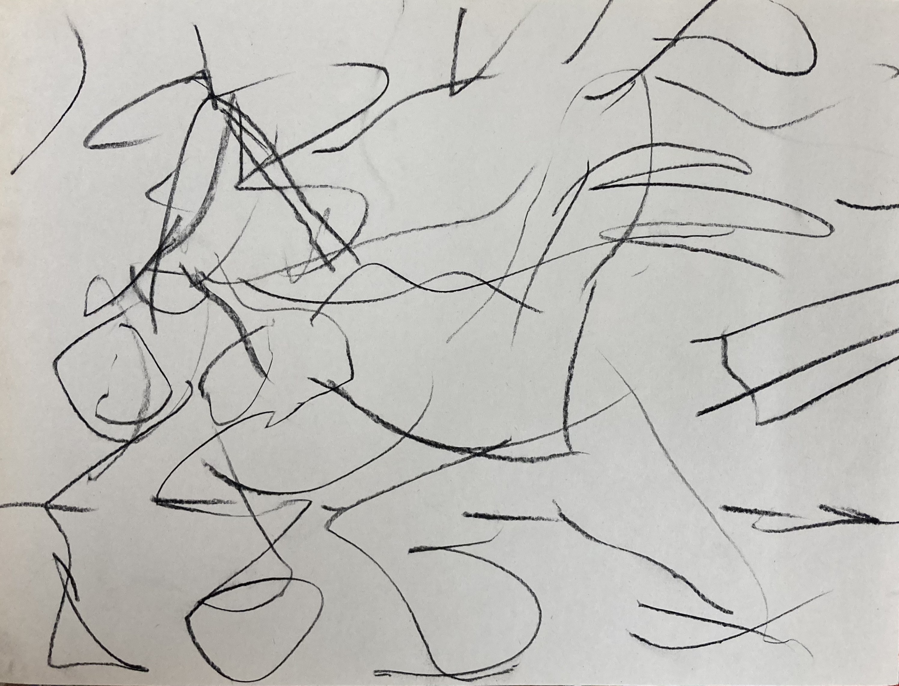 black charcoal lines making up an abstract horse drawing