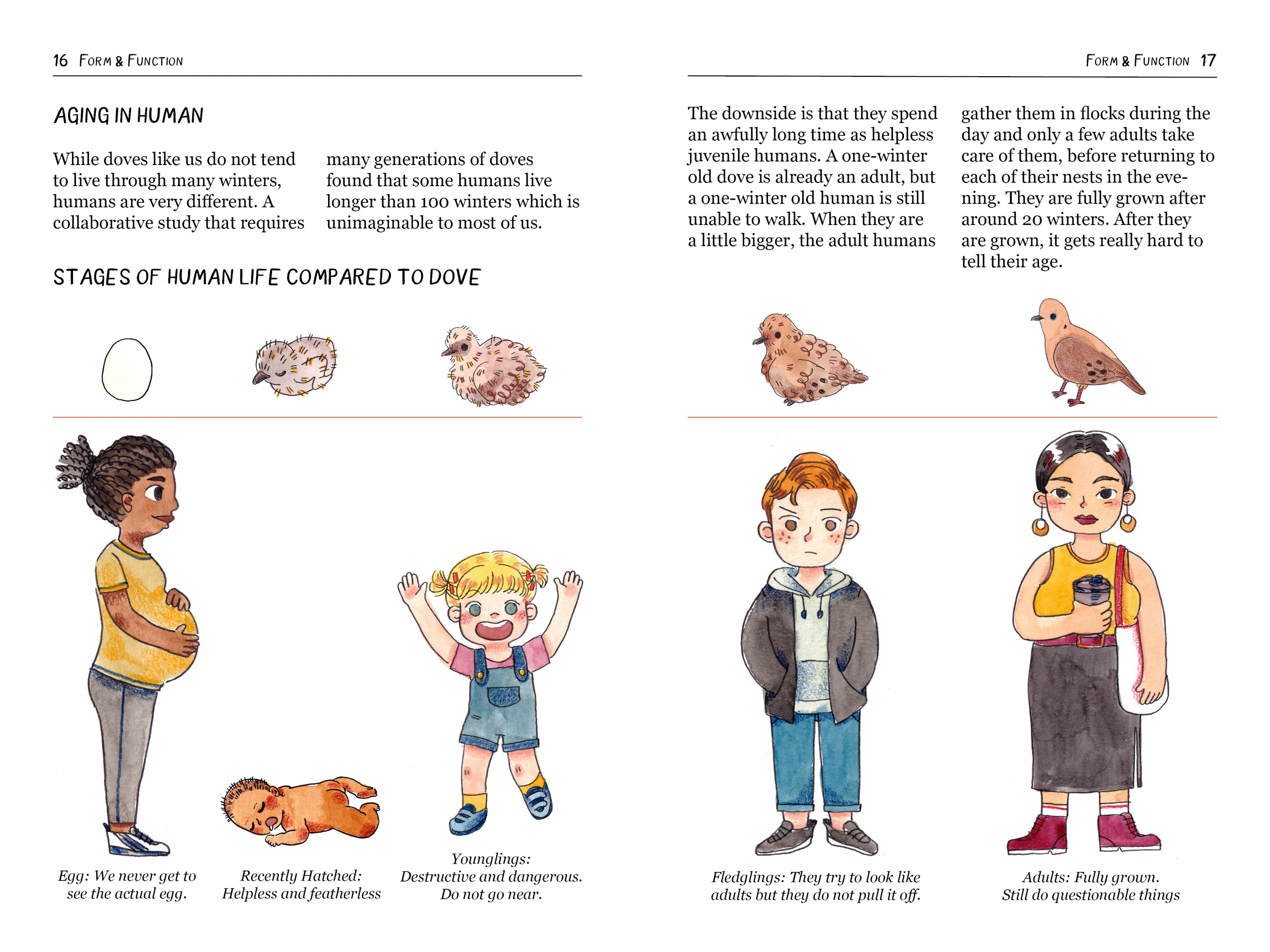 A textbook spread from the book