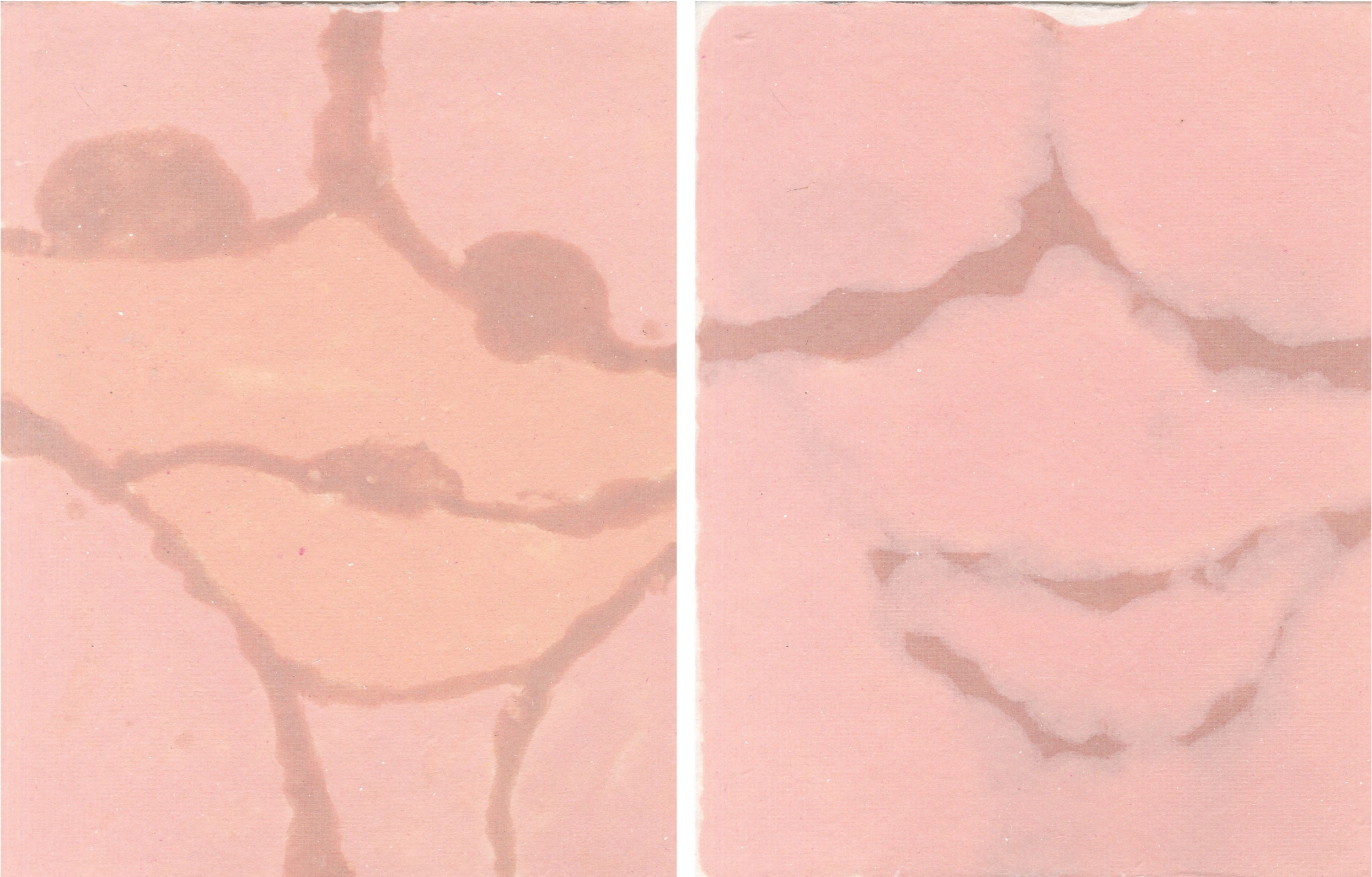 First image shows a nude color pulp painting of a female torso, including the breasts, stomach, and thighs. These body parts are outlined by a darker nude color. Second image shows a nude color pulp painting of a woman's vagina, including her thighs. Thes