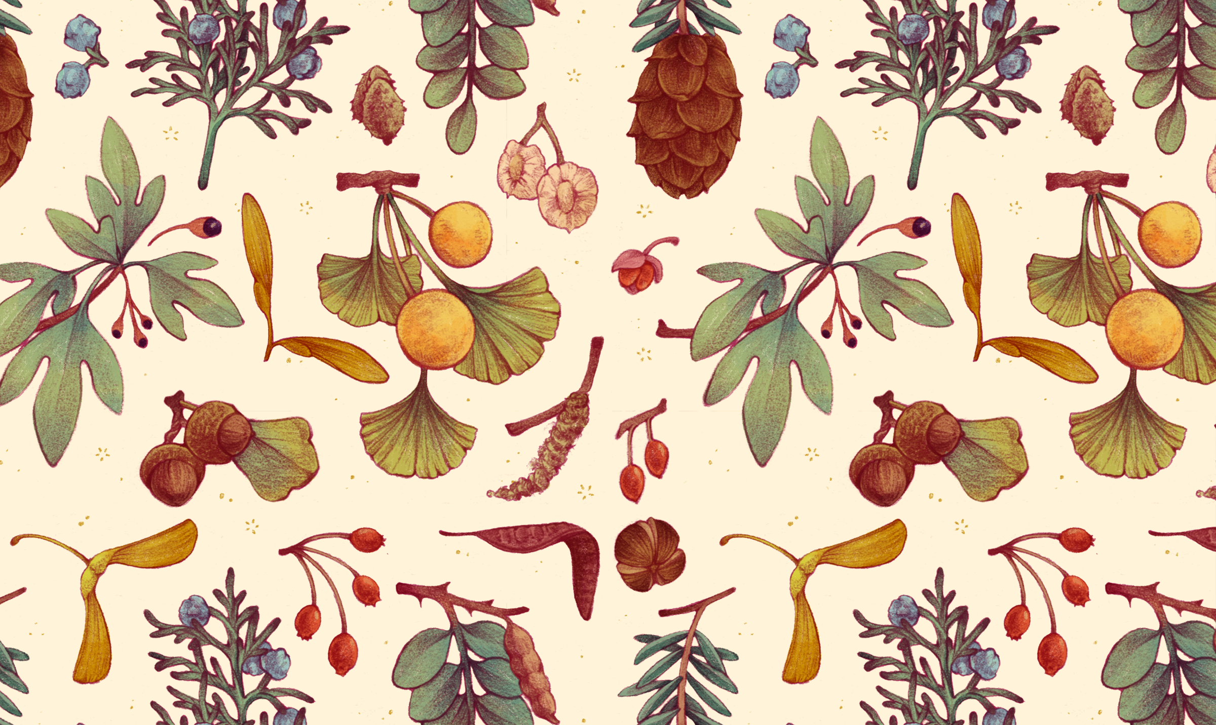A pattern featuring various parts of North American trees, such as a sprig of juniper and its berries, ginkgo leaves and fruit, hemlock needles and cones, and the seeds of maple trees, elm trees, and beech trees.