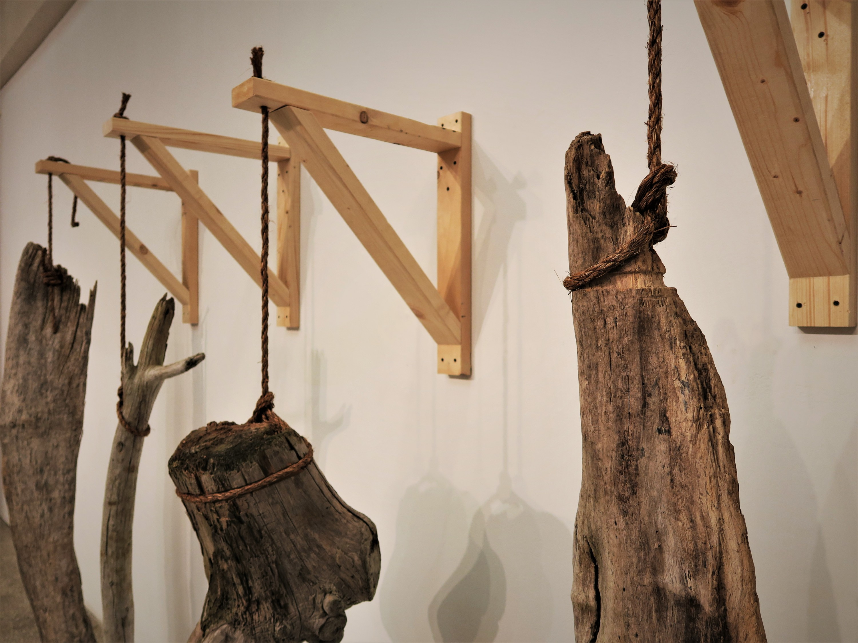 Wood plays an indispensable role in life. Raw, natural wood are treated like animals in a slaughterhouse.