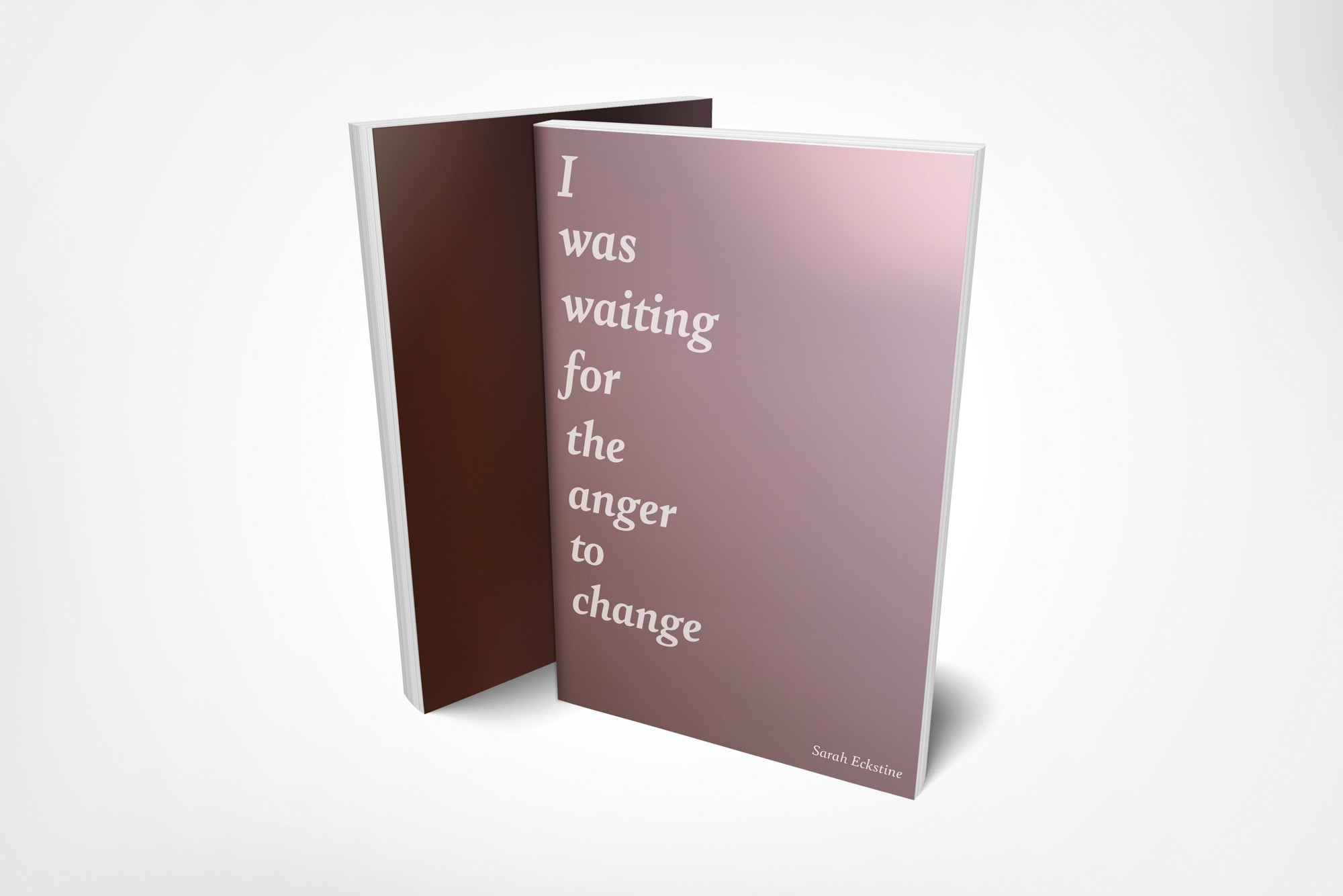 Picture of Paperback book titled: I Was Waiting For The Anger To Change
