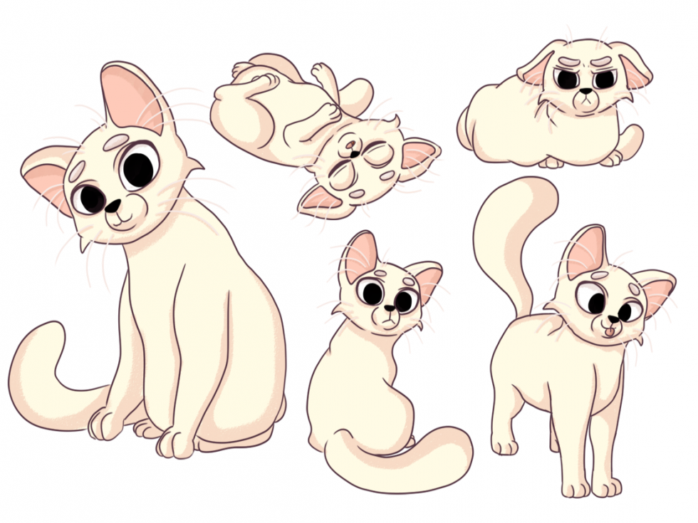 Cream colored cat in multiple poses to show quirky personality