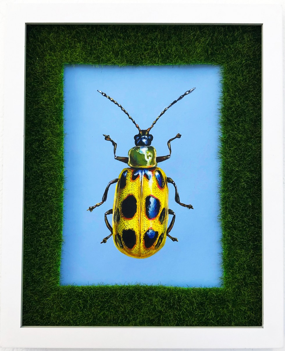 Rectangular acrylic painting of a brightly colored yellow spotted cucumber beetle on a contrasting sky blue background in a white frame with faux grass matting.