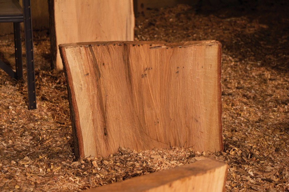 Wooden slabs with rough cut faces sitting upright on the ground.