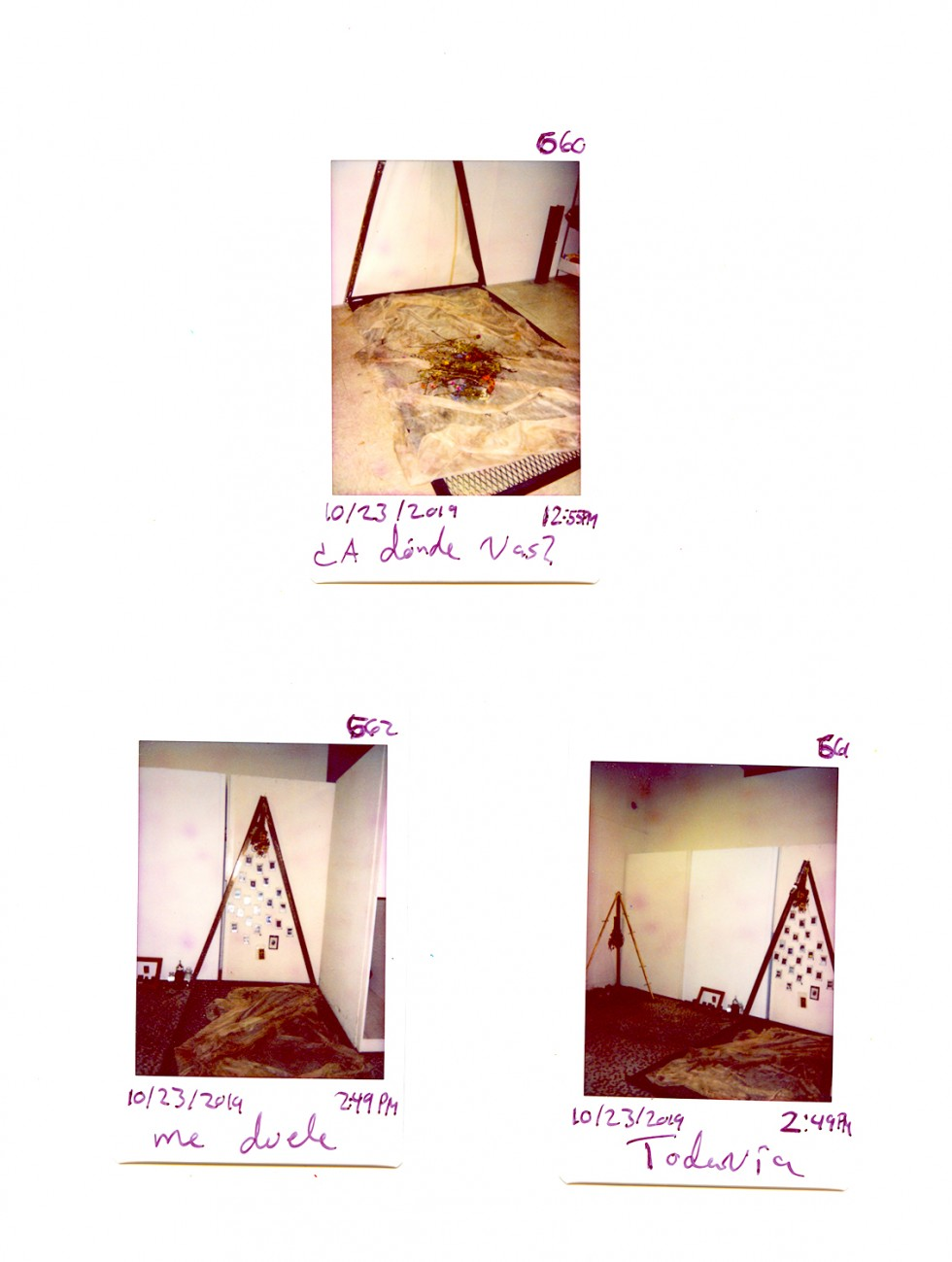 Tripod like structure with dead flowers hanging like a pendulum over a circle of soil with a photograph in the middle