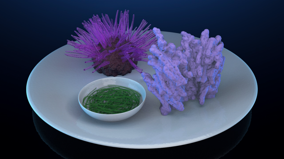 There are three images: the first image is a still life 3d rendering consisting of an algae bowl, light purple coral, and violet colored anemone all gathered on top of a white ceramic plate. The second image is a flag with the Photi brand logo. The third
