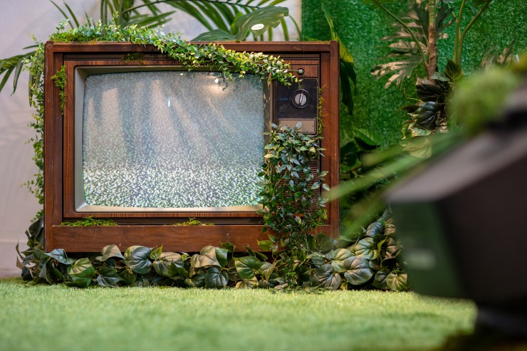 """An antique TV in the space with """"organic"""" plants growing out of it."""
