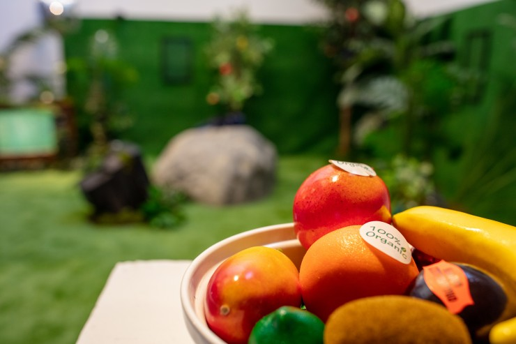 """Some ready-made """"100% organic"""" fruits. A wider view of the install sits in the background."""