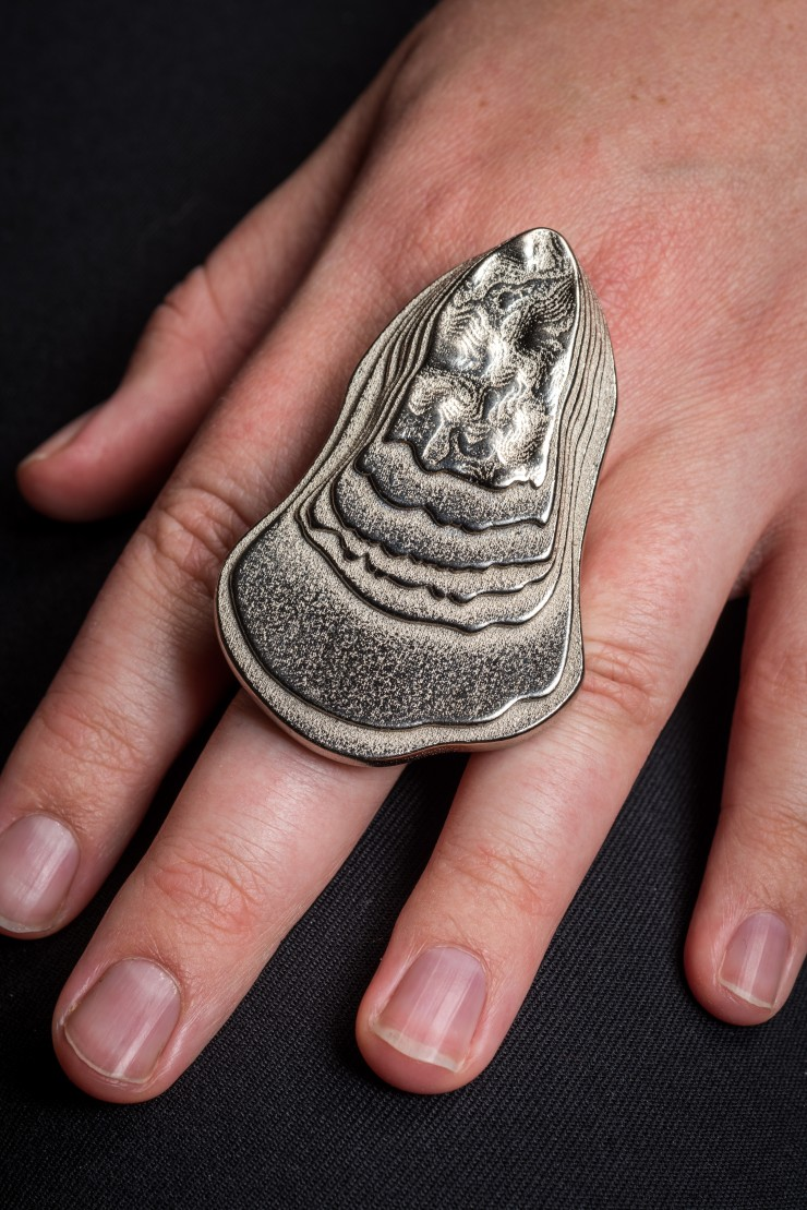 medium: 3D-printed Nickel-plated Steel description: Ring that carries the physical and emotional weight of melting glaciers. Specifically, this ring visualizes the melting pattern of the Skaftafellsjökull glacier in Iceland, since 1890. Photo by Dan Meyer