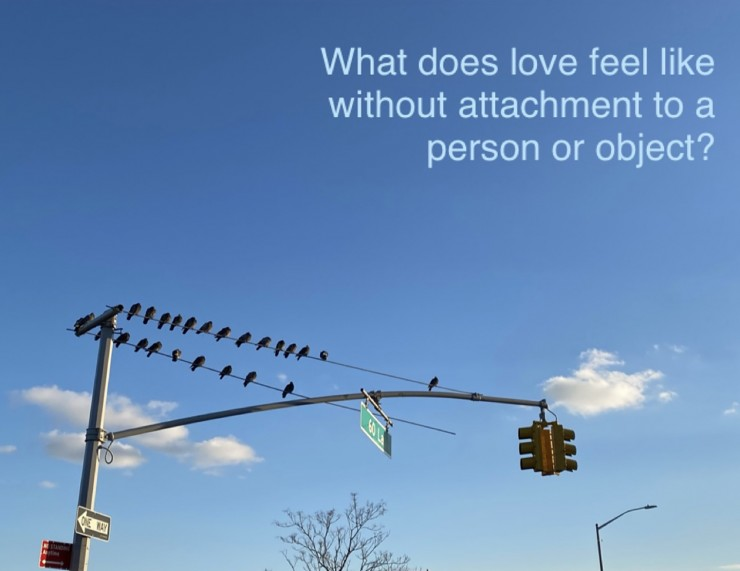 """A photograph of a flock of pigeons sitting on the pole of a traffic light against a blue sky with two small, white clouds reads in pale blue sans serif text """"What does love feel like without attachment to a person or object?"""""""