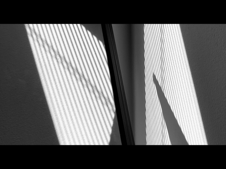 Black and white abstract Photographs.