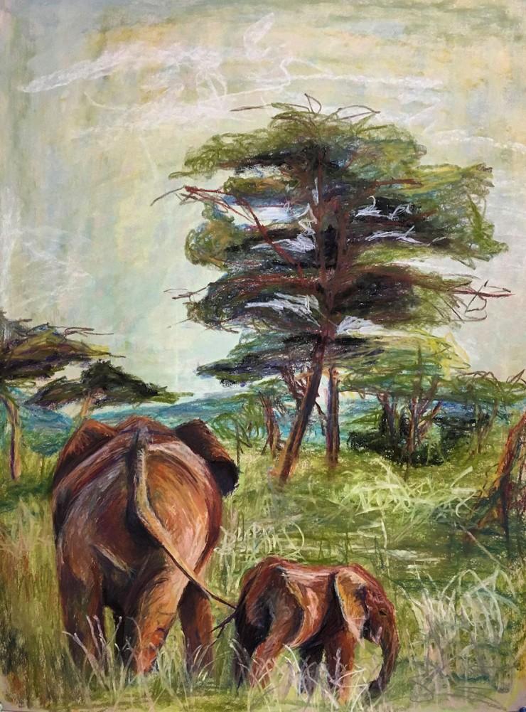 Observation of elephant relationships