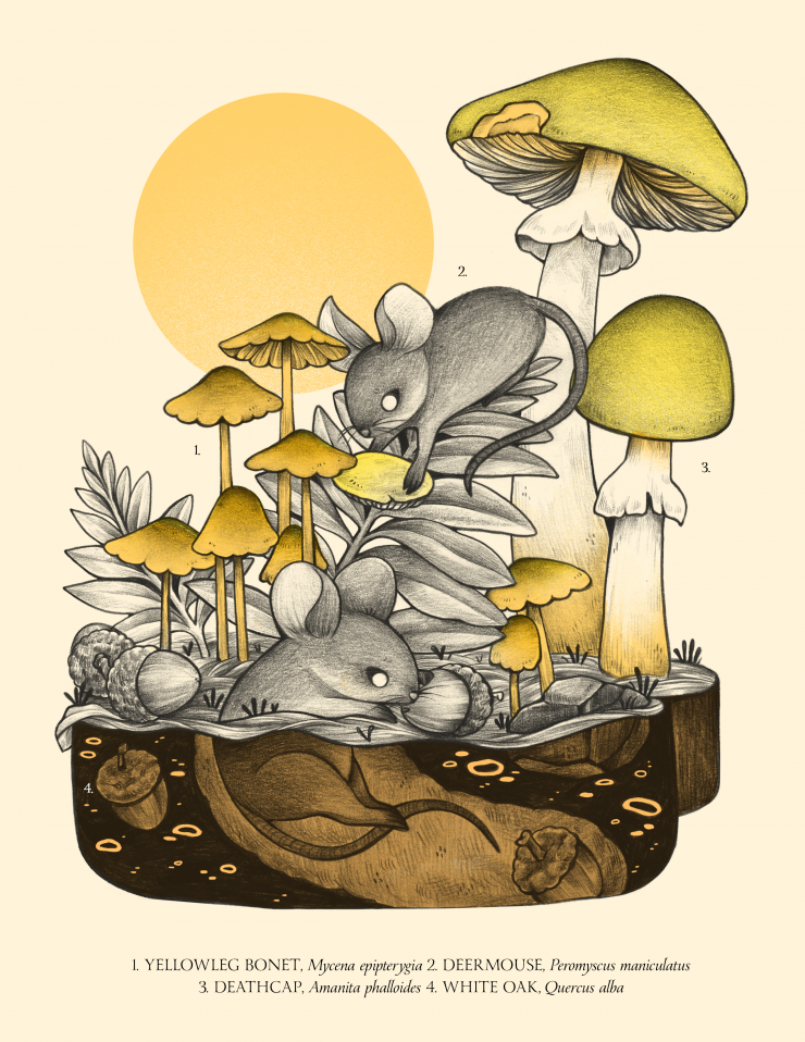 Wood mice collecting mushrooms and acorns and bringing them underground to store away for the winter. This print uses black, yellow, and pink Risograph colors.
