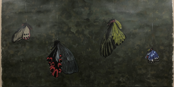Four kinds of endangered butterflies in Taiwan, to remind people about environmental issues.