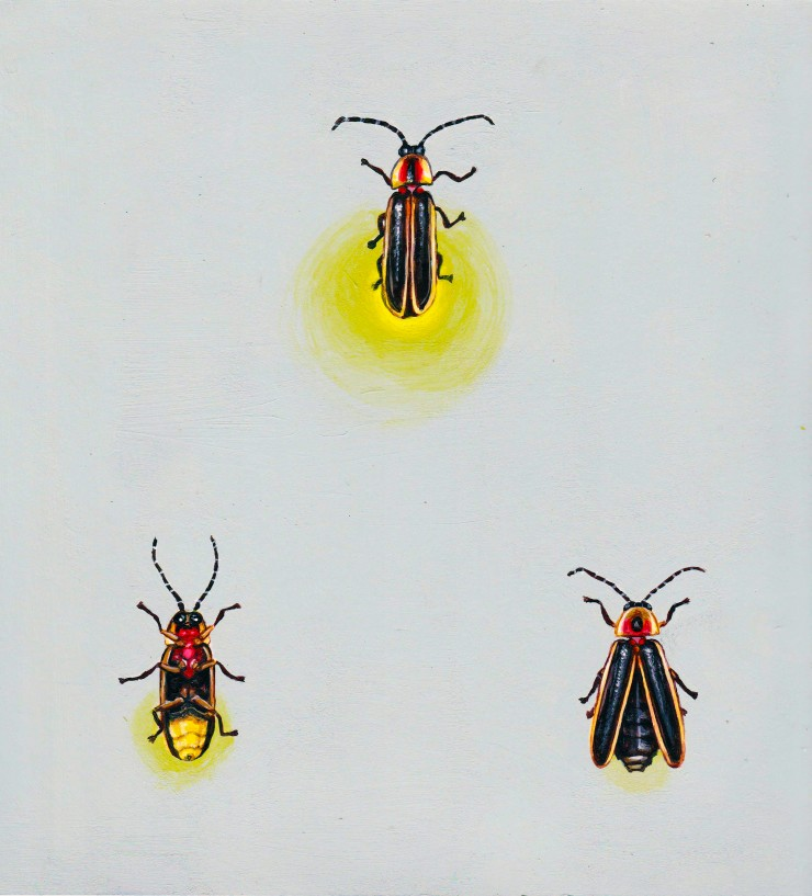 Square acrylic painting of three eastern fireflies arranged in a triangle on a pale gray blue background. The one at the top is glowing brightly, the one to the bottom  left is facing its slightly glowing belly to the viewer, while the one to the bottom r