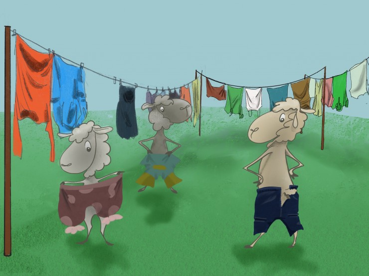Sheep find clothes that are hung on clothesline to dry. The sheep try on human clothes to cover up their shaved shivering bodies.
