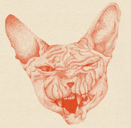 Red stippled illustration of a cats head thats scowling
