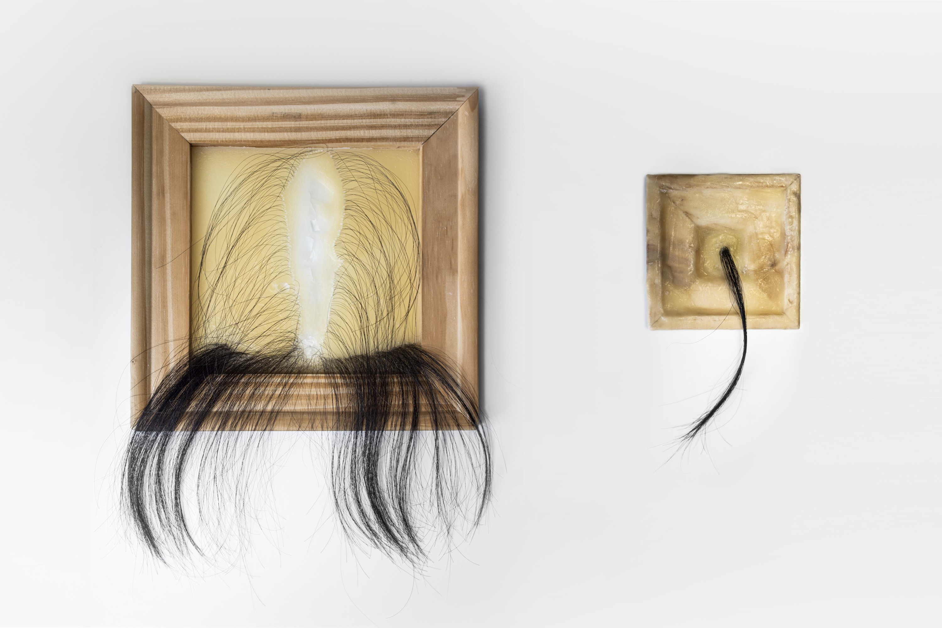 This work contains two parts, one Framed wax and one wax-covered frame with implanted hair that naturally falls every day.