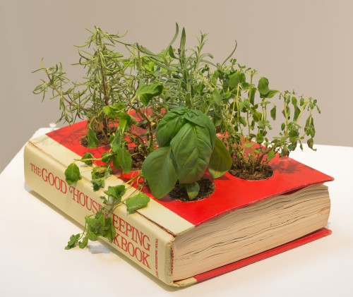 Red book with yellow spine on a table with plants growing out of the front cover