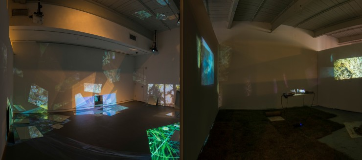 Two gallery spaces with projections scattered around both spaces by devices attached to the projectors. The images are of grass and trees.
