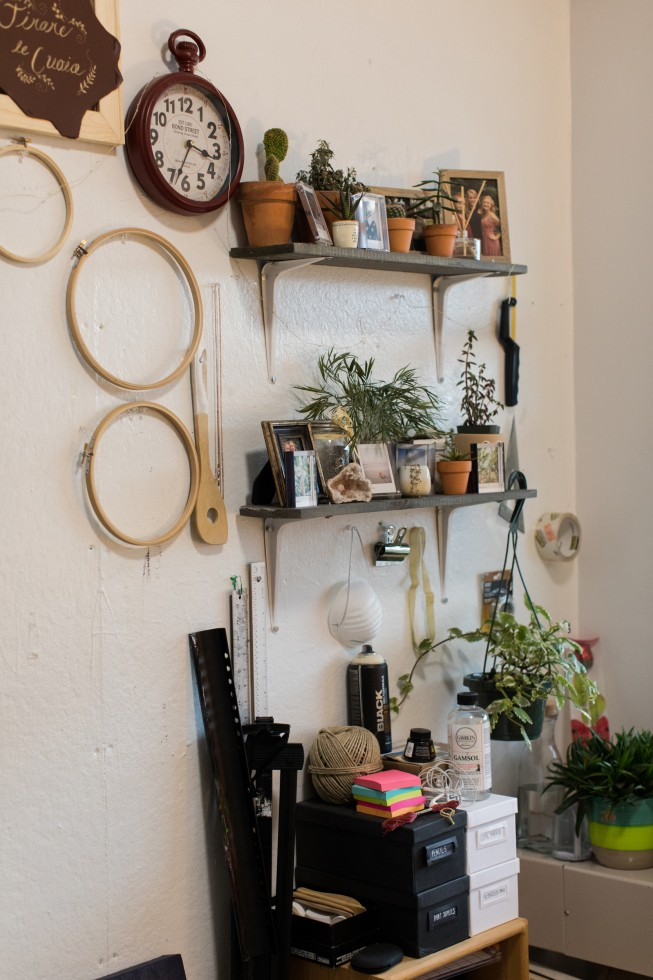 Shelves with plants and art supplies in a Cater Hall apartment.